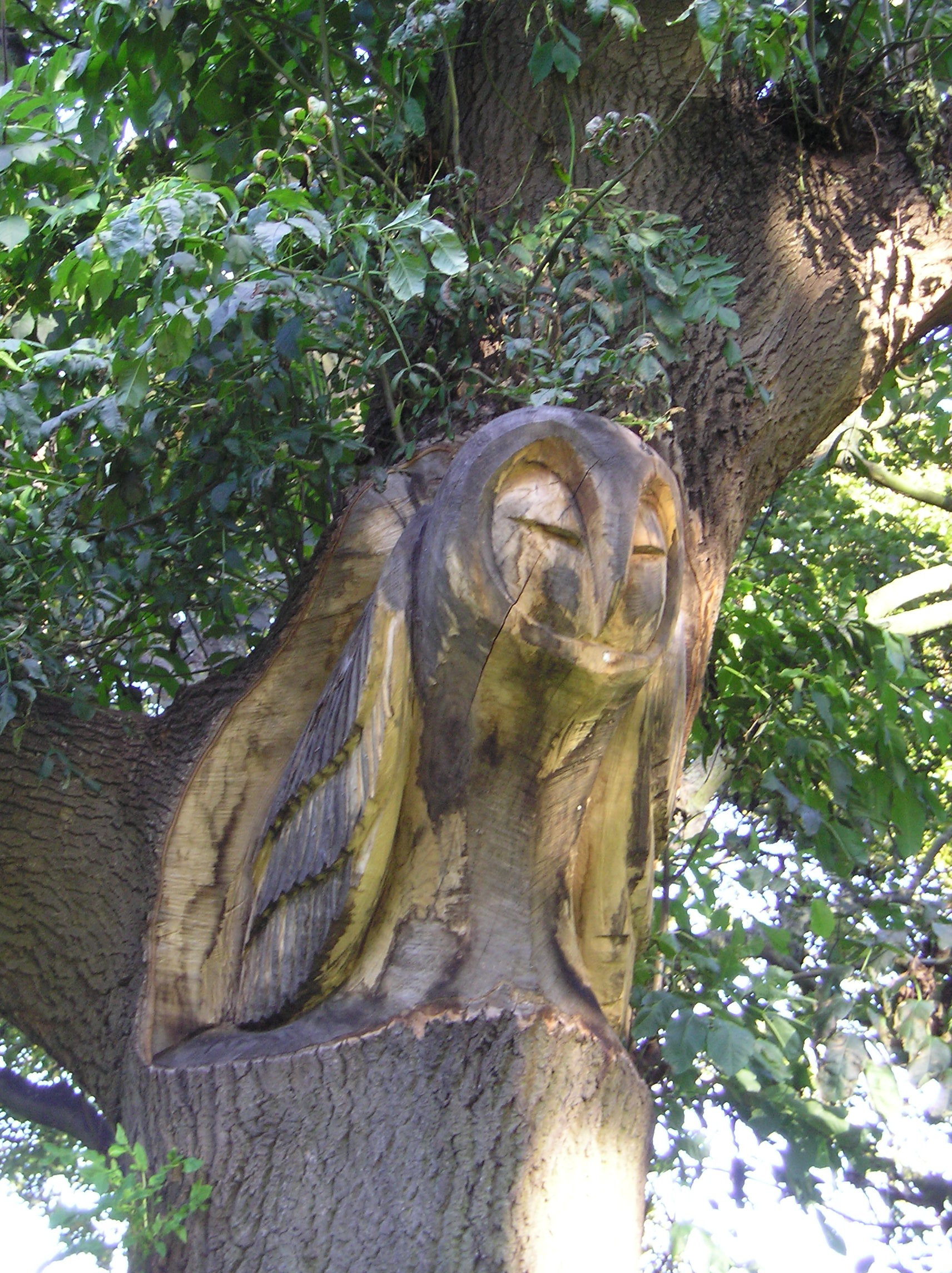 3 Tree Branch Carving - Owl